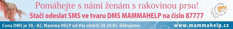 Banner_DMS_960x120_novy