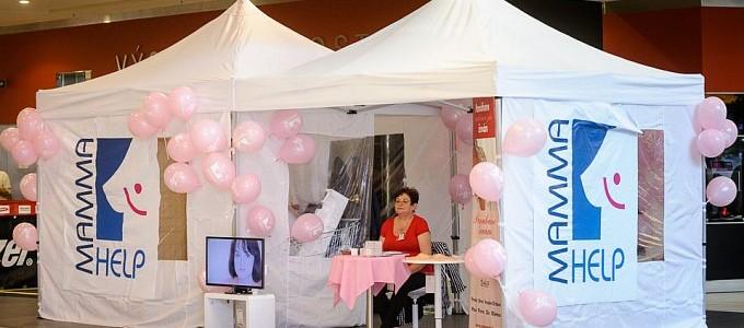 Měsíc v růžové - 30 let celosvětového boje proti rakovině prsu