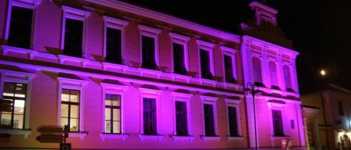 Růžová radnice v Hluboké nad Vltavou